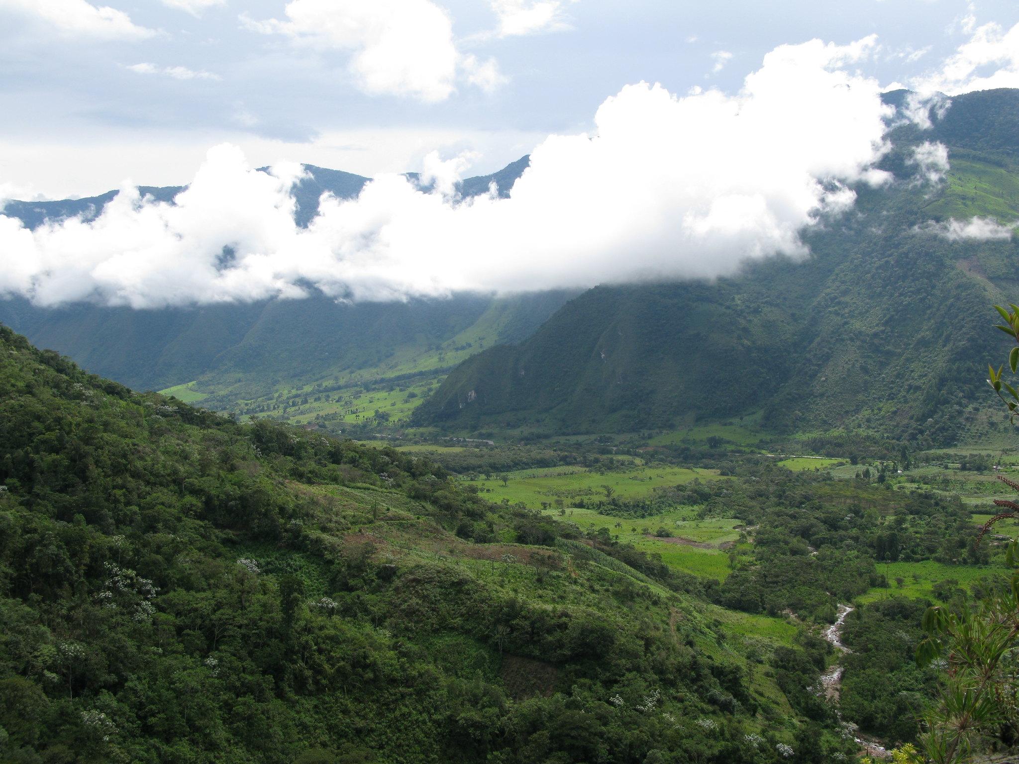 HuWongHuang